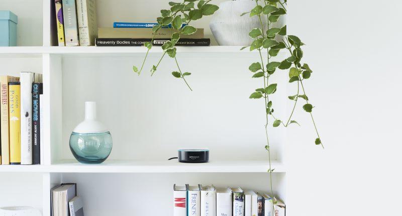 Der Amazon Echo Dot im Bücherregal